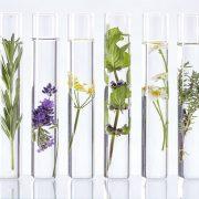 trattamenti e consulenze naturopatiche-marta-simonetto-naturopata-trattamenti-e-consulenze-busto-arsizio-mozzate-