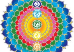 chakra-marta simonetto-naturopata-busto arsizio-centro di naturopatia-mozzate-1
